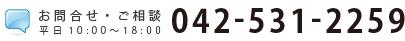 042-531-2259